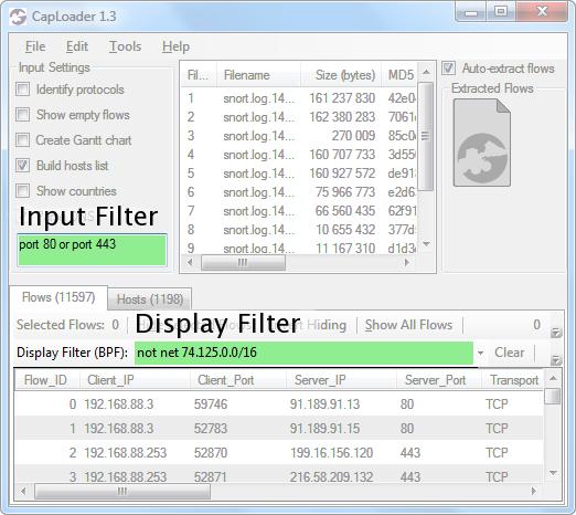 CapLoader BPF Input Filter and Display Filter