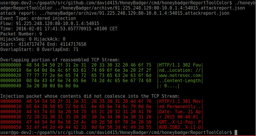 HoneyBadger detecting an injected TCP packet with FIN flag