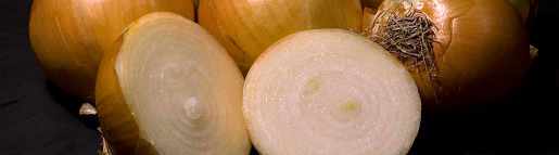 Yellow onions with cross section. Photo taken by Andrew c