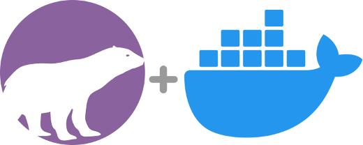 PolarProxy + Docker