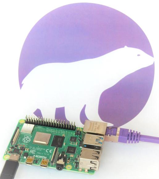 Raspberry Pi 4 Model B running PolarProxy
