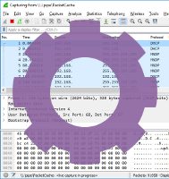 Wireshark reading from PacketCache